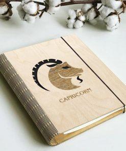 Zodiac diary_Capricorn